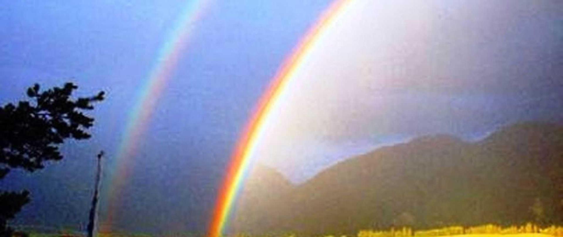 tn_regenbogen01.jpg