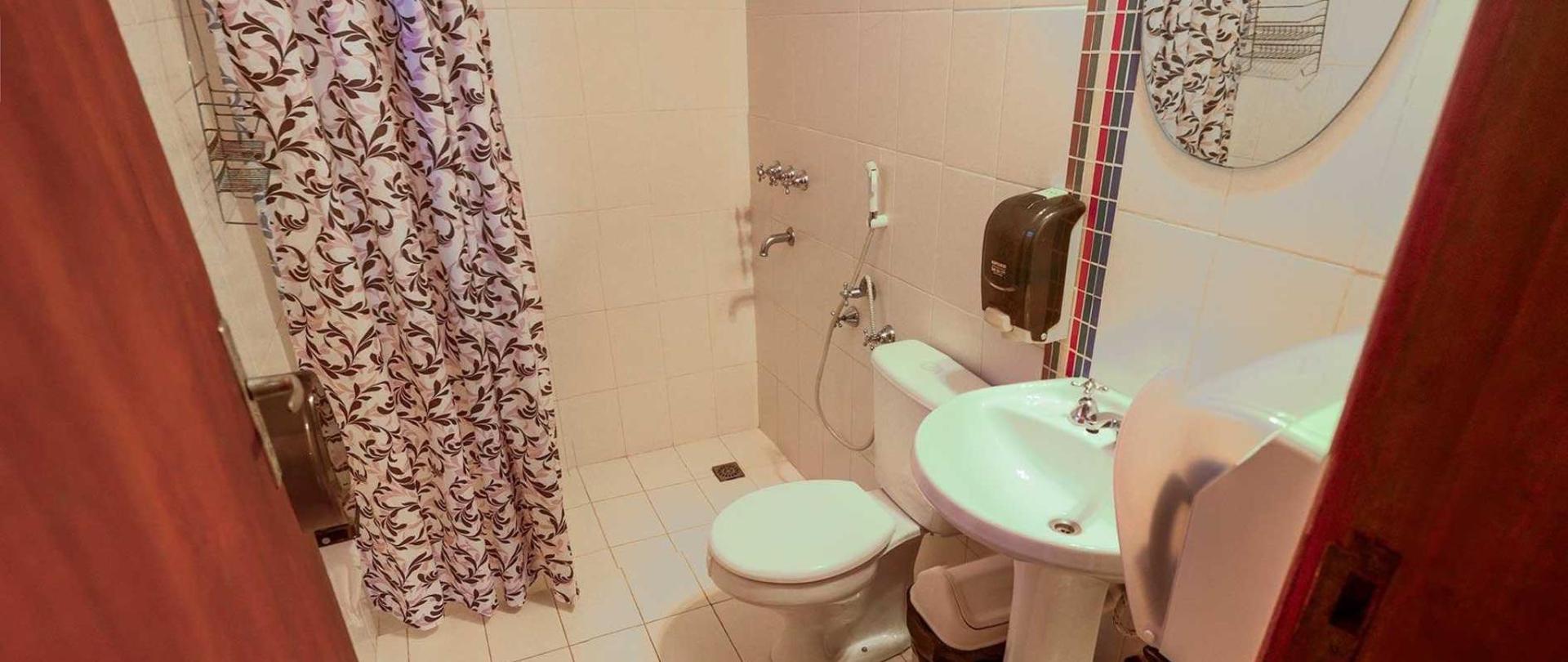 ara35-banho-afuera-pieza.jpg
