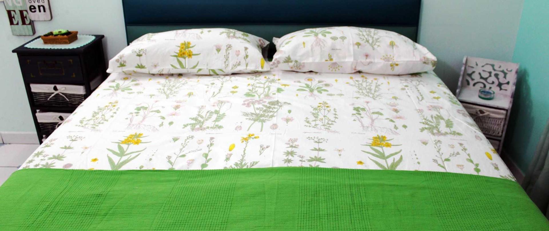 verde2-5-3.jpg
