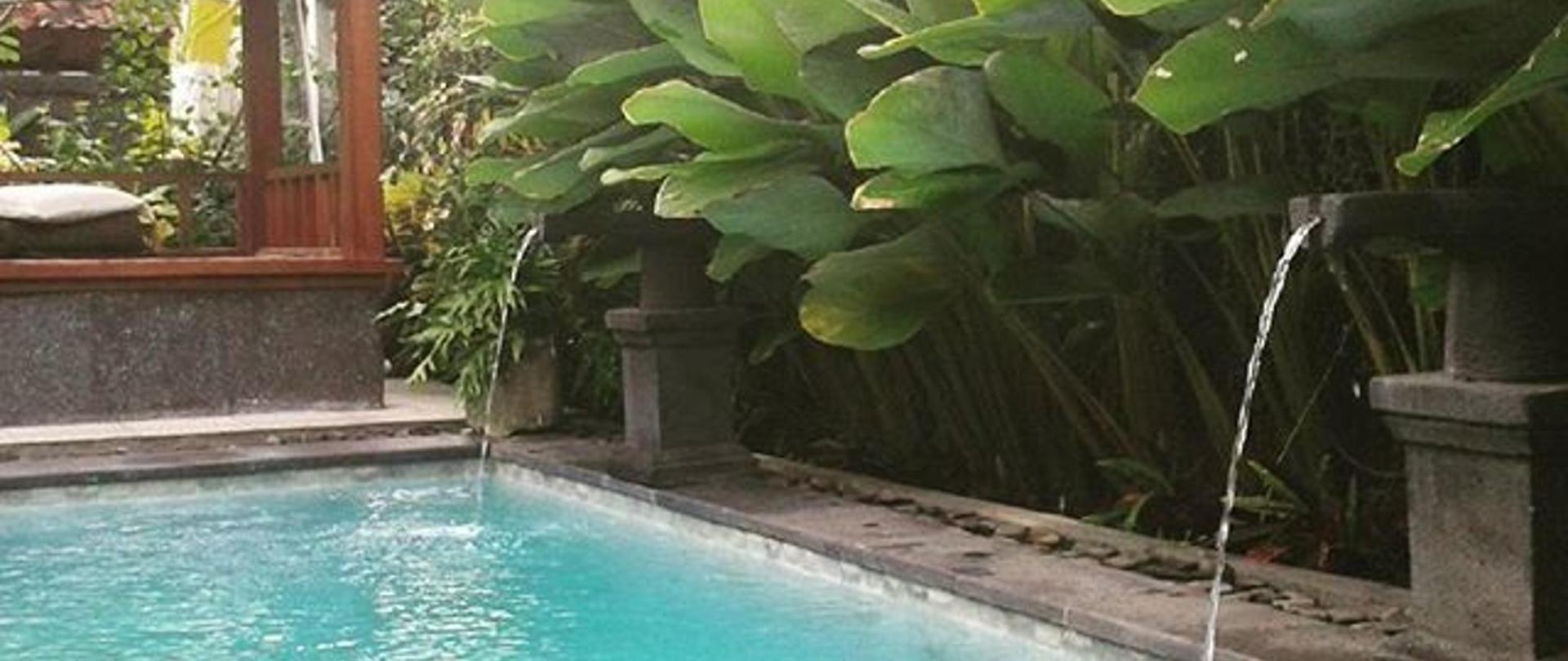 outdoor_pool_in_chez_ida-_dont_miss_it_cheaphotel_chezida_trip_bali_backpaker_pool_villa_ubud_sukawati.jpg