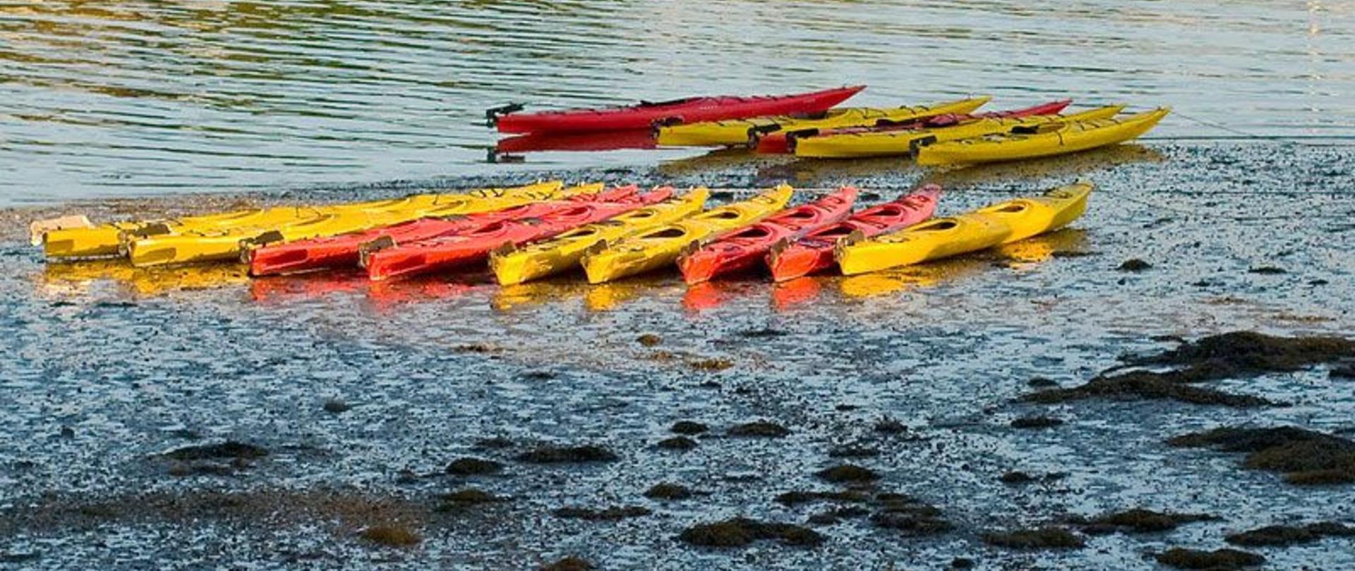 Kayaking Activities.jpg