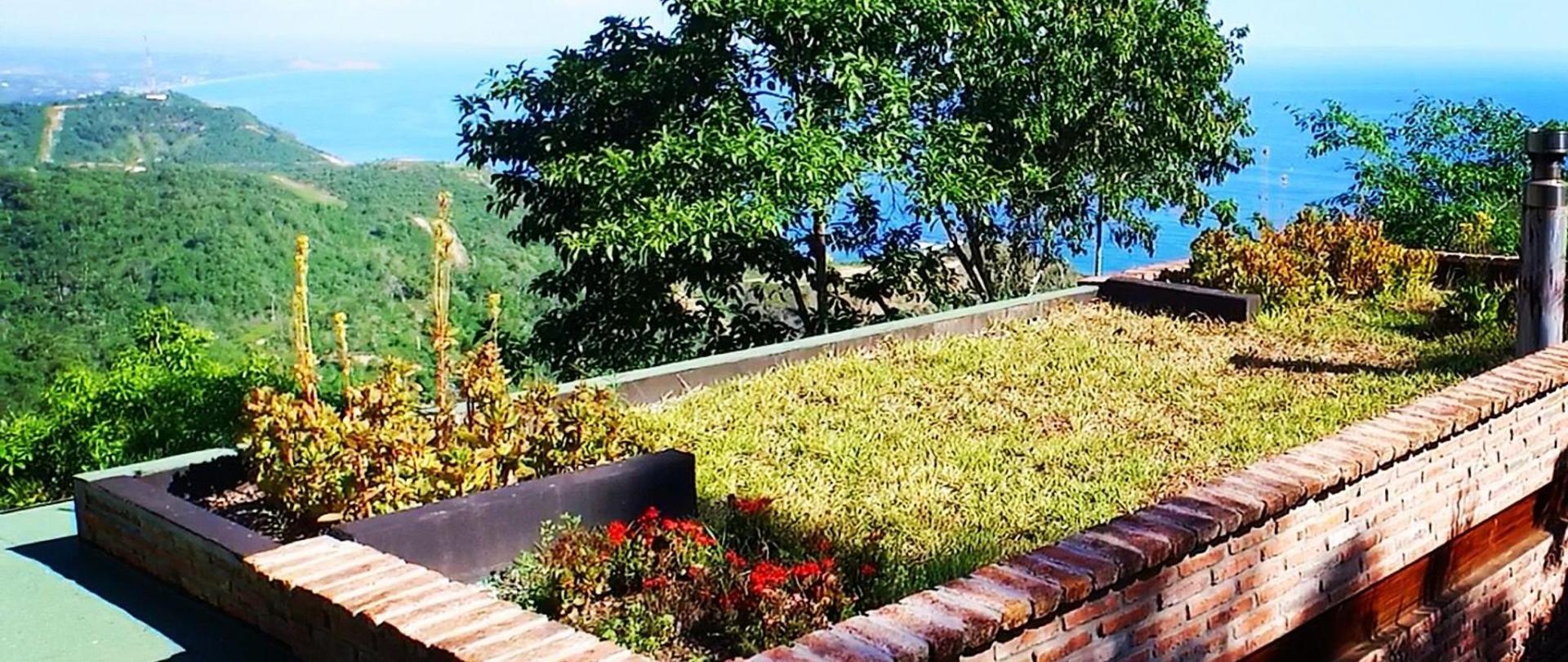 Cerro Lobo