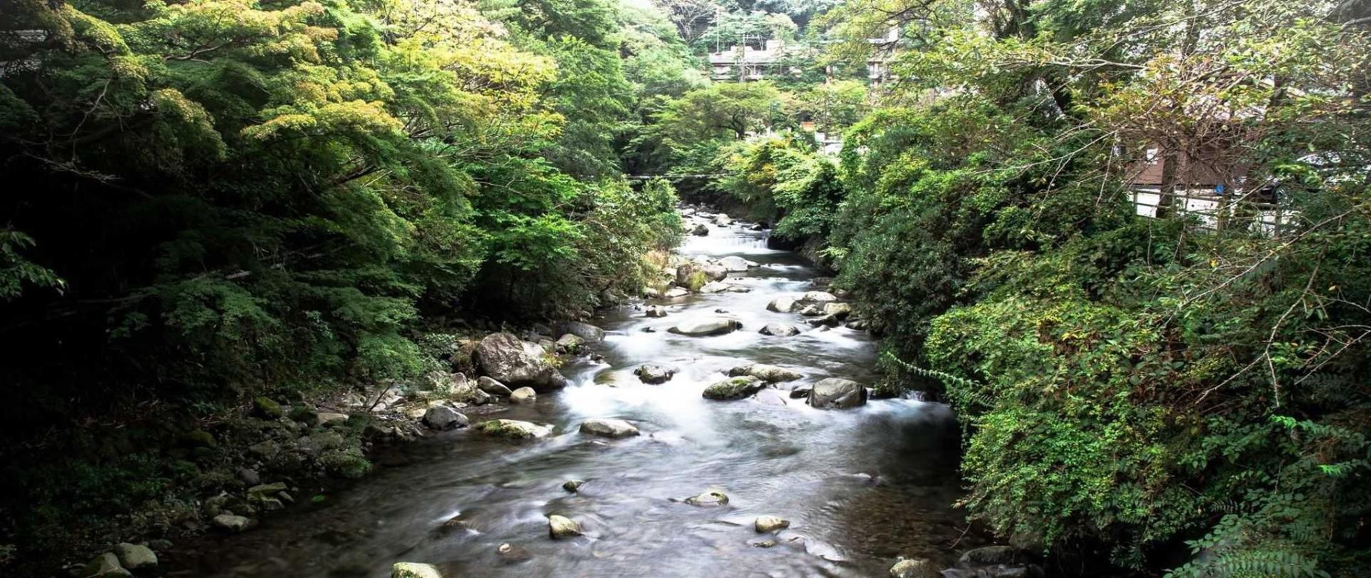 Yushintei