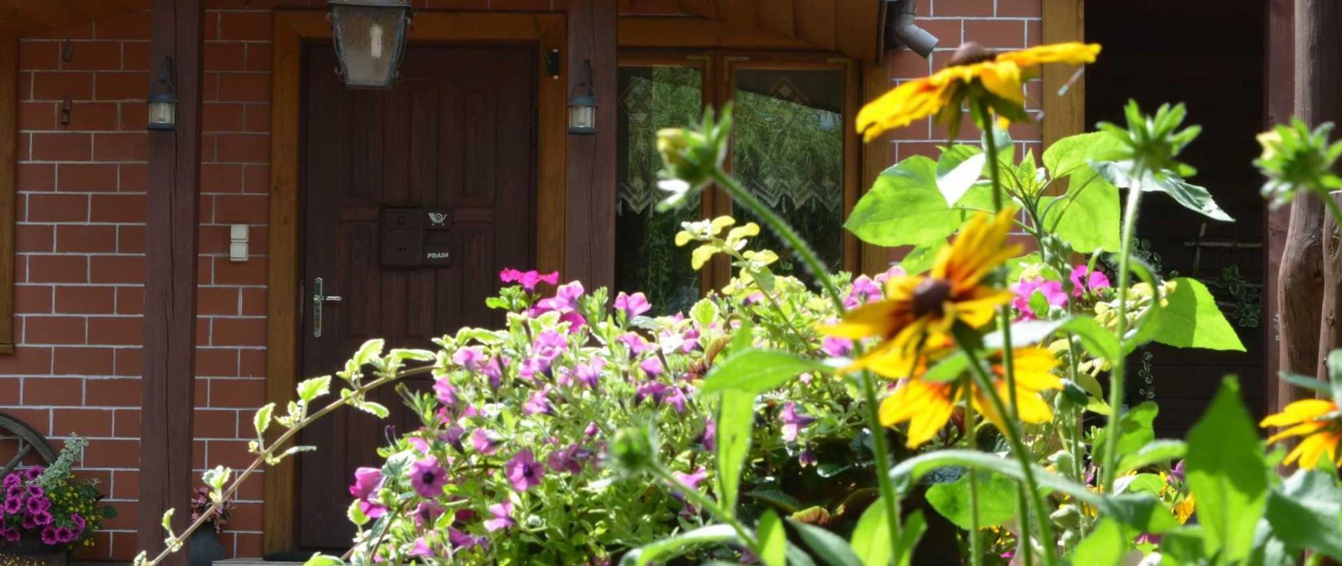 Kwiaty przed domem.JPG