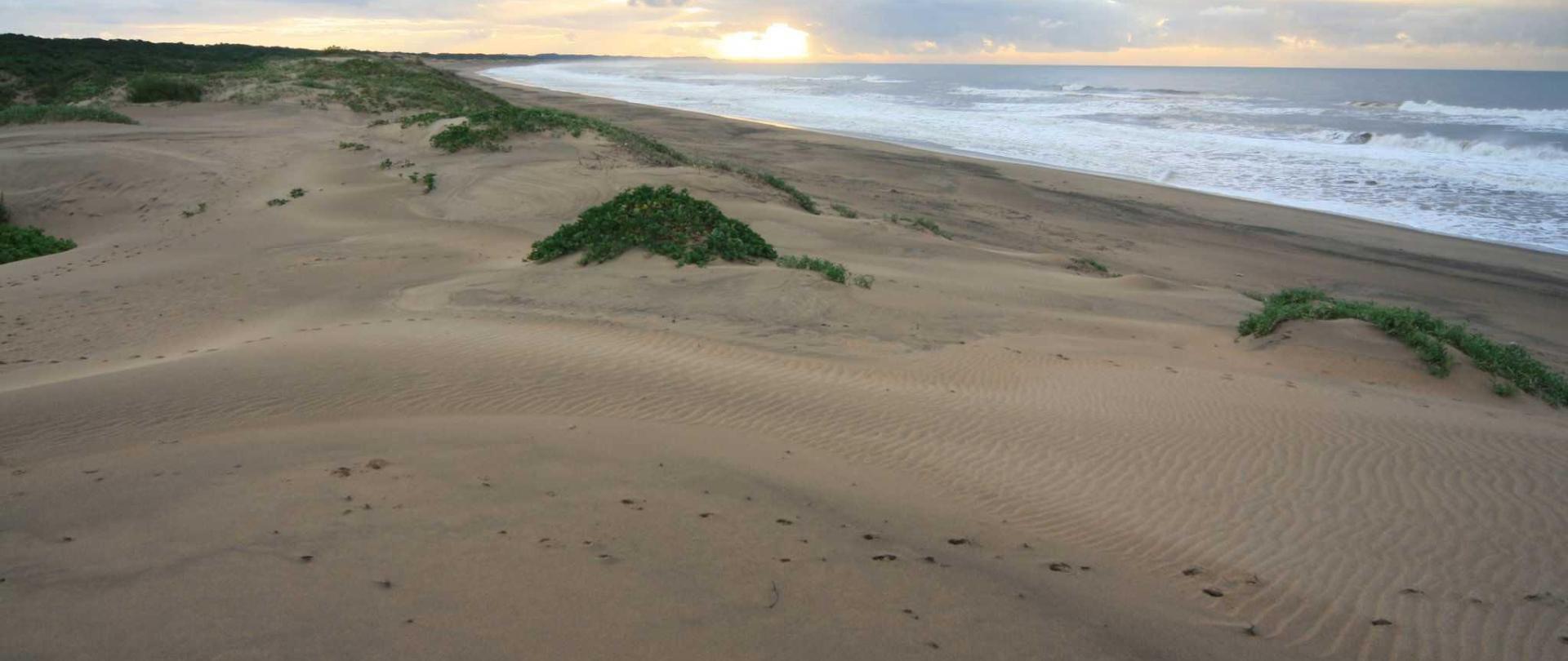 mtunzini-beach_5995-1.jpg