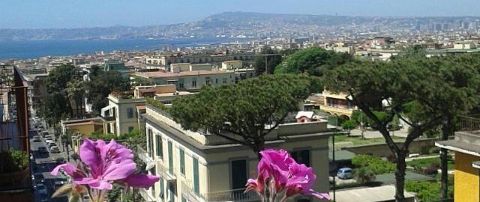 spring-memories-oggi-piove-bblabellavista-view-terrace-landscape-springmemories-flowers-sun-blusky-rainy-portici-napoli-visitnaples-visititaly-italy-italiaislove.jpg