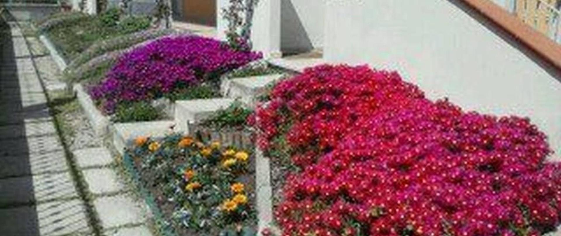 fiori-1.jpg