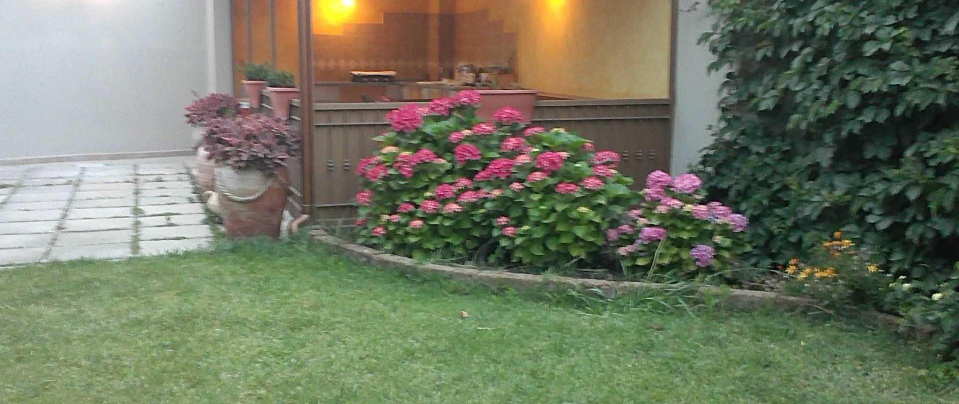 giardino-2.jpg