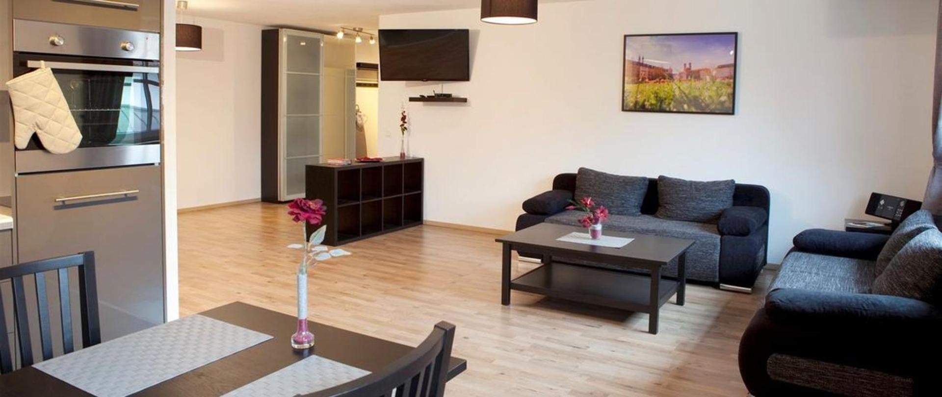appartement_wohnzimmer_ku-a-che-kopie.jpg.1140x481_0_210_5937.jpg