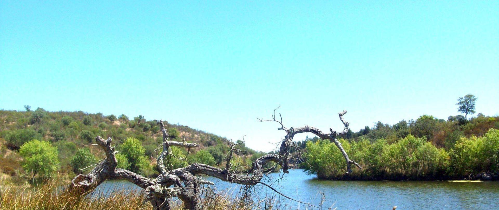 Barragem da Tapada, Lousal