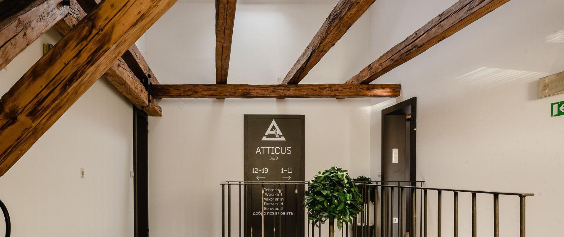 atticus-0108.jpg
