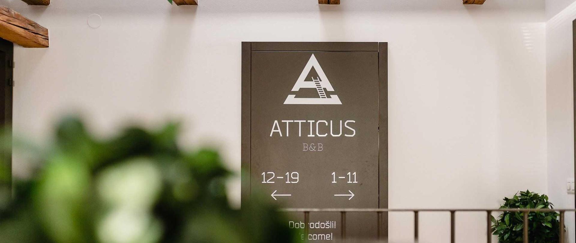 atticus-0106.jpg
