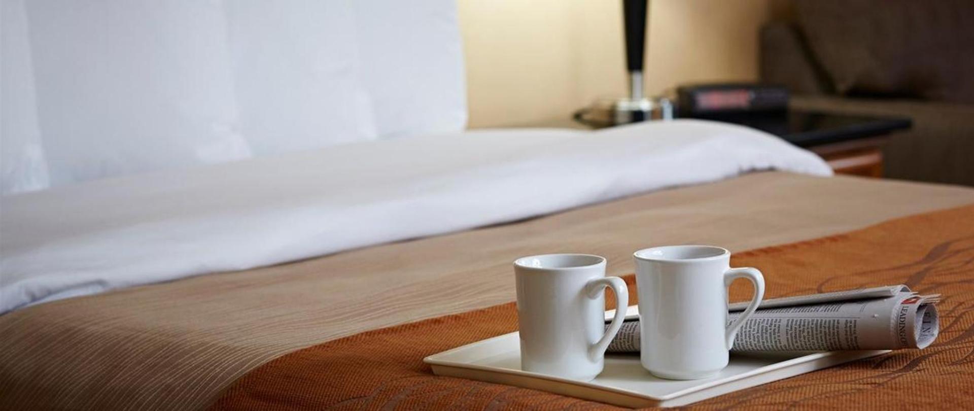 room-amenities.jpg.1170x493_0_234_6093.jpg