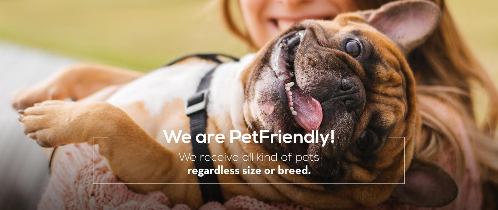 www-jazzapartments-com-somos-pet-friendly-ingles.png