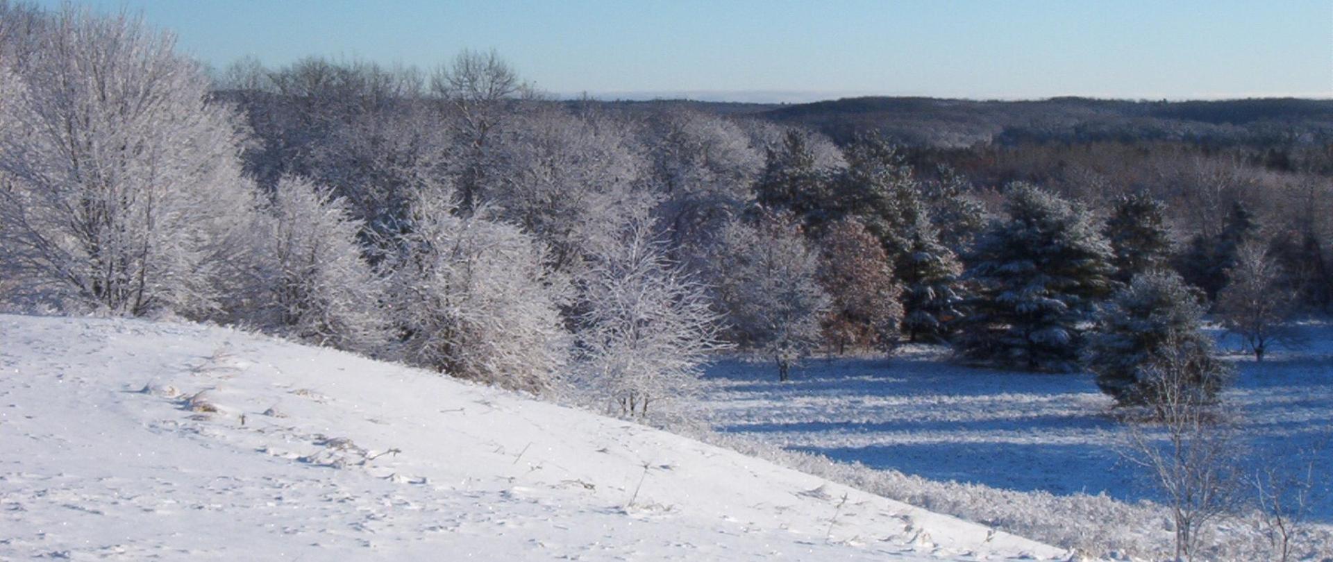 Snow Hill.jpg