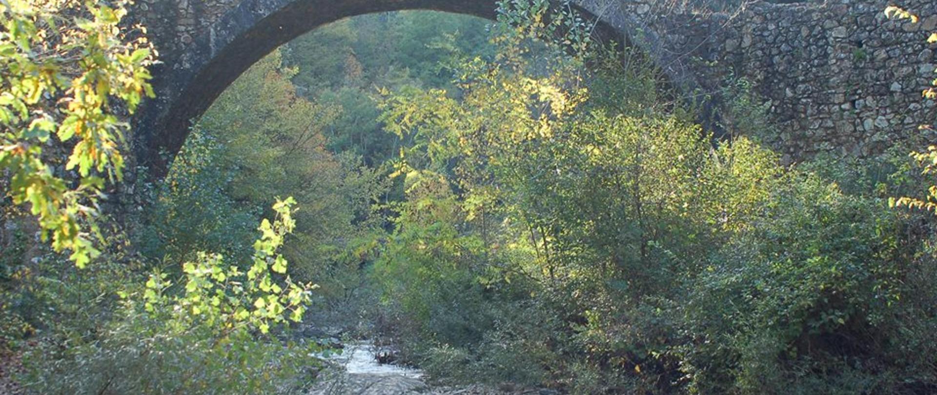 Ponte della Pia dei Tolomei.jpg
