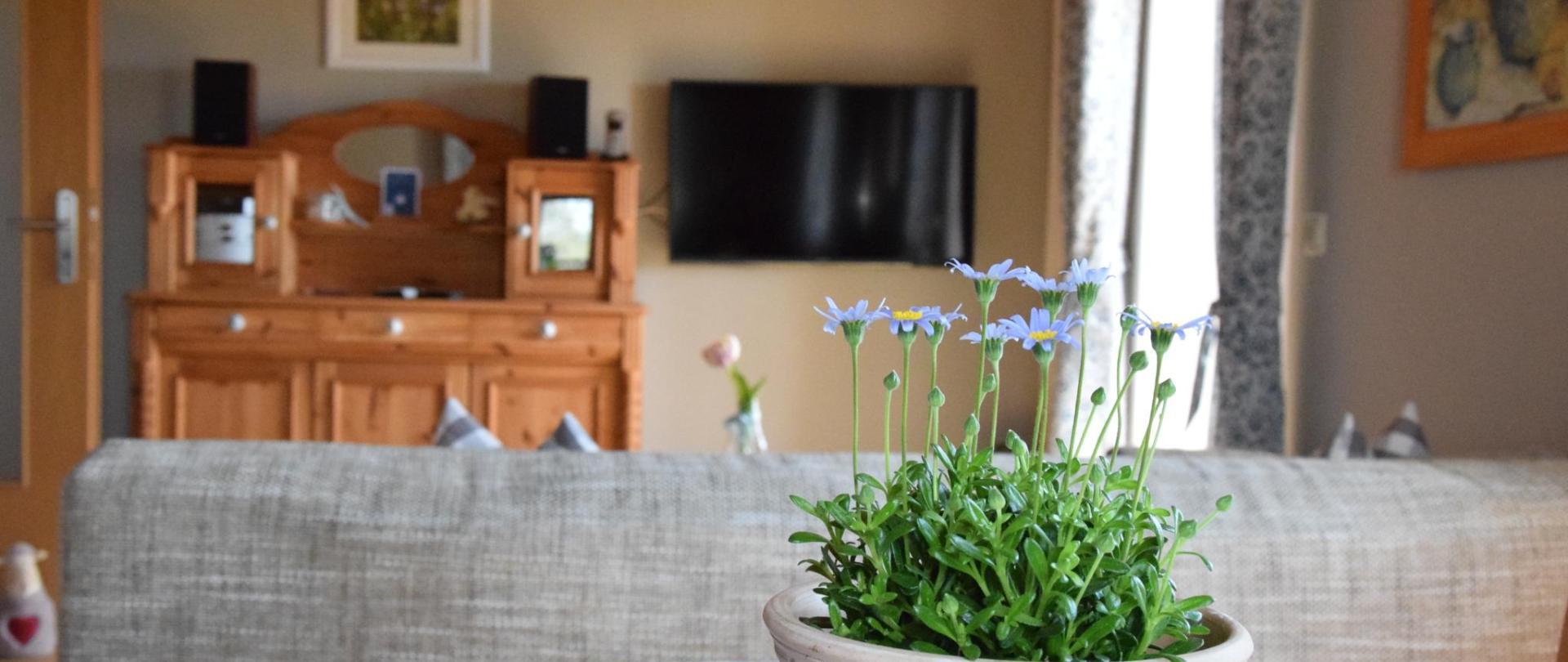 Küche Blumen.JPG