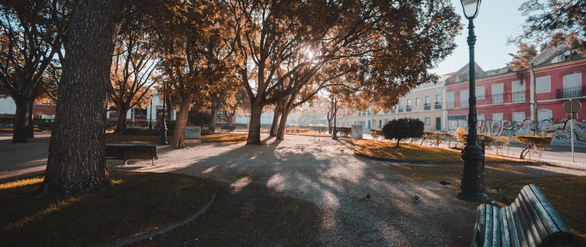 Vista 3.jpg