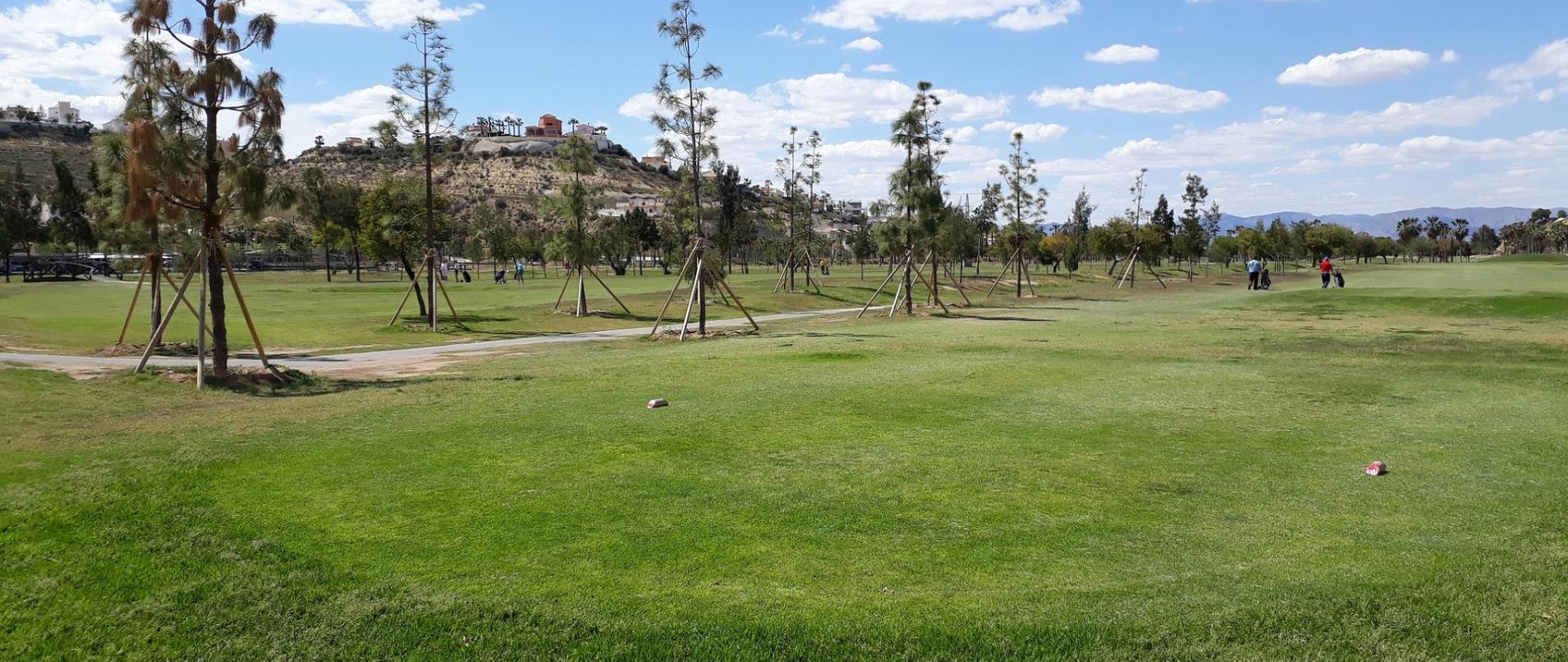just landed golf2.jpg
