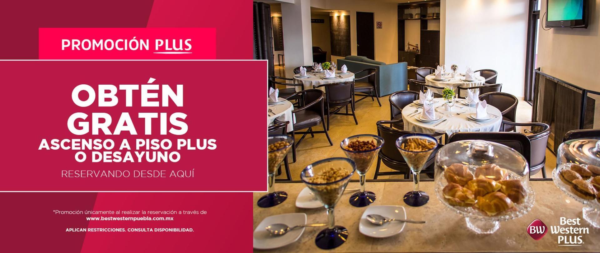 Hotel_Promocion_PisoPlus.png