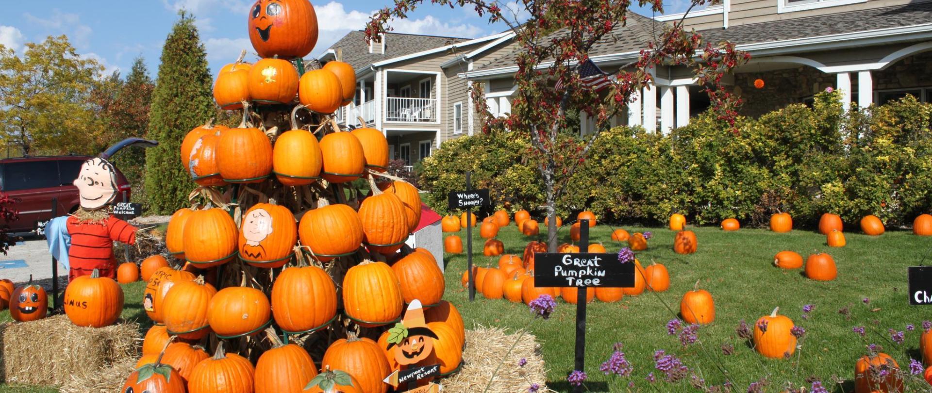 pumpkin patch 2010 086.jpg