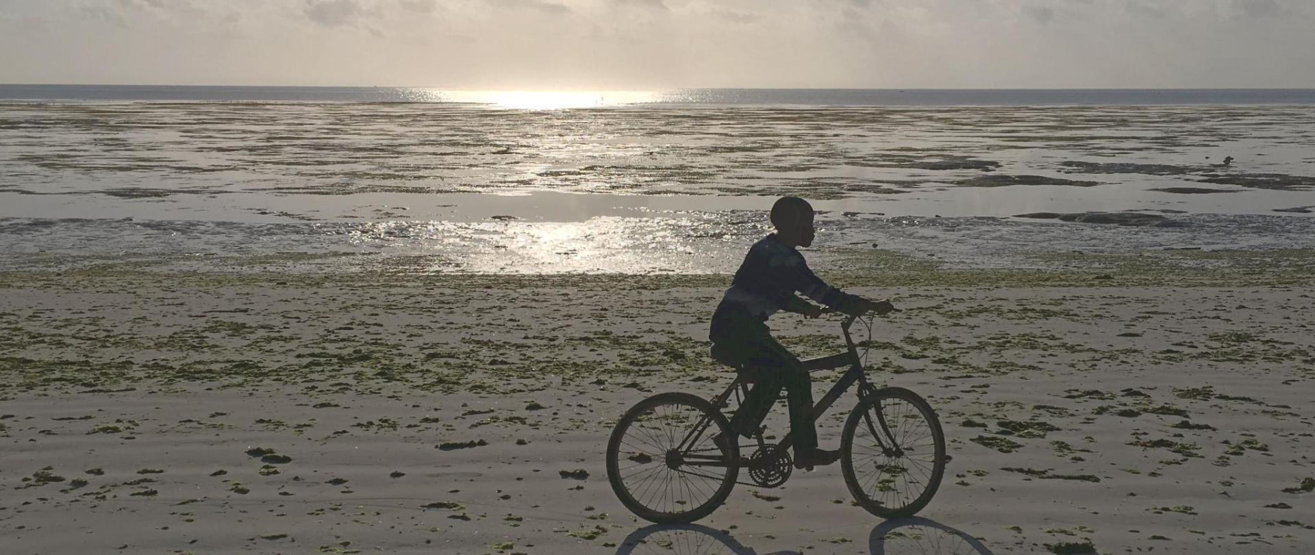 Biking c