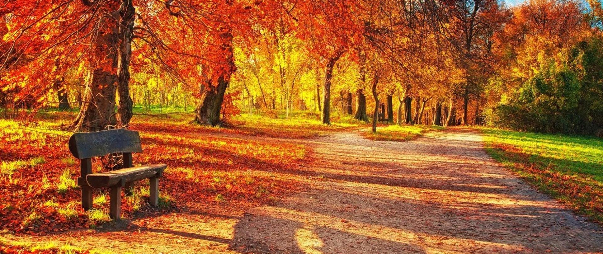 Herbst neu.jpg