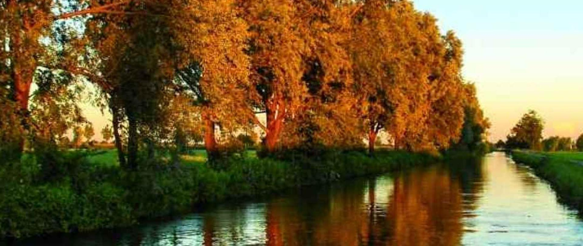 CANALE AUTUNNO.jpg