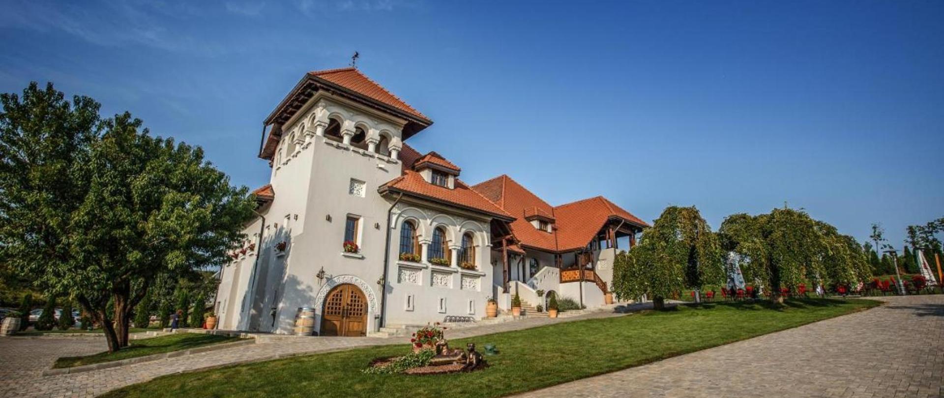 Casa Timiș