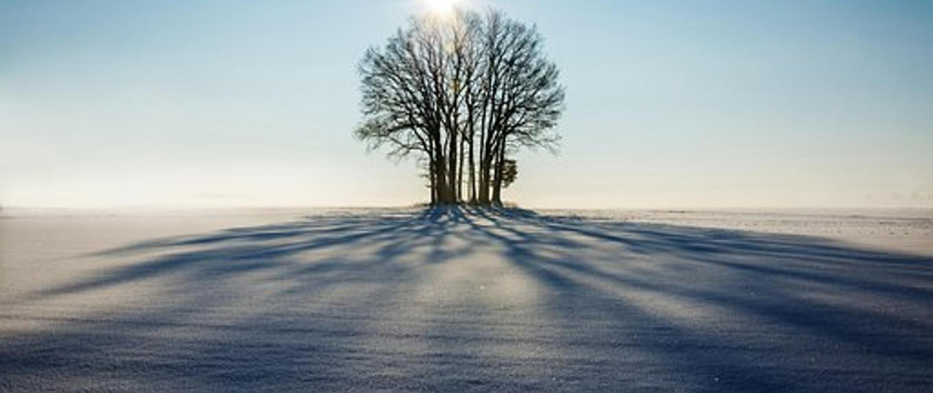 winter-1965902__340.jpg