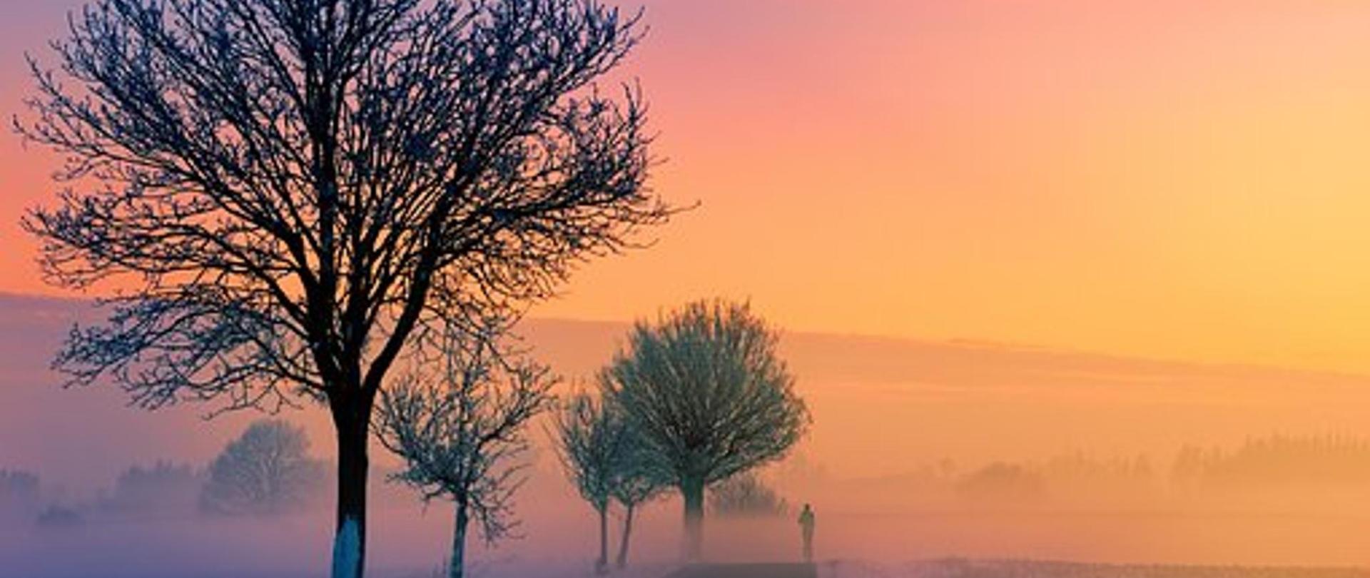 winter-3197686__340.jpg