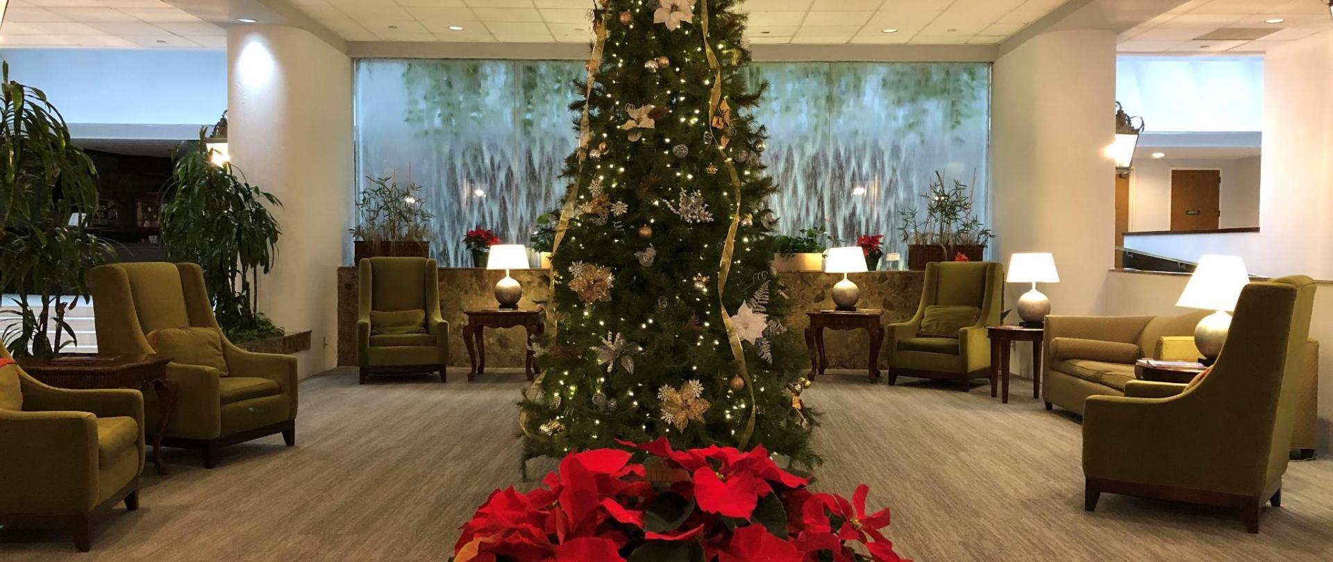 Lobby Christmas.jpg