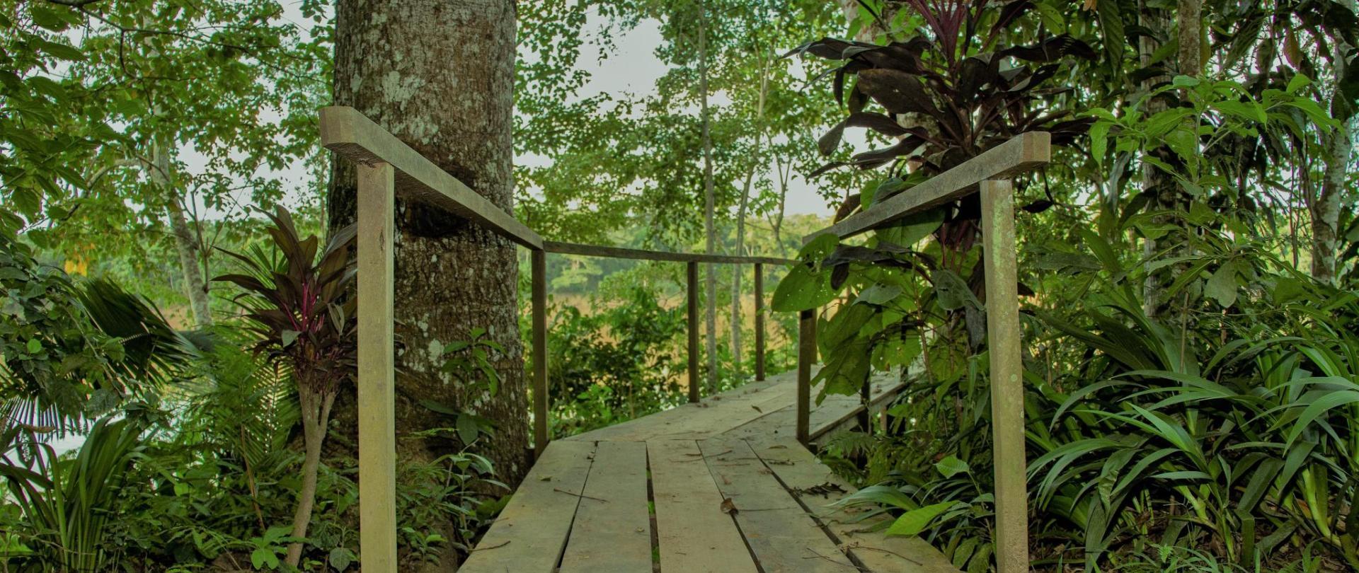Tambopata River_57.jpg