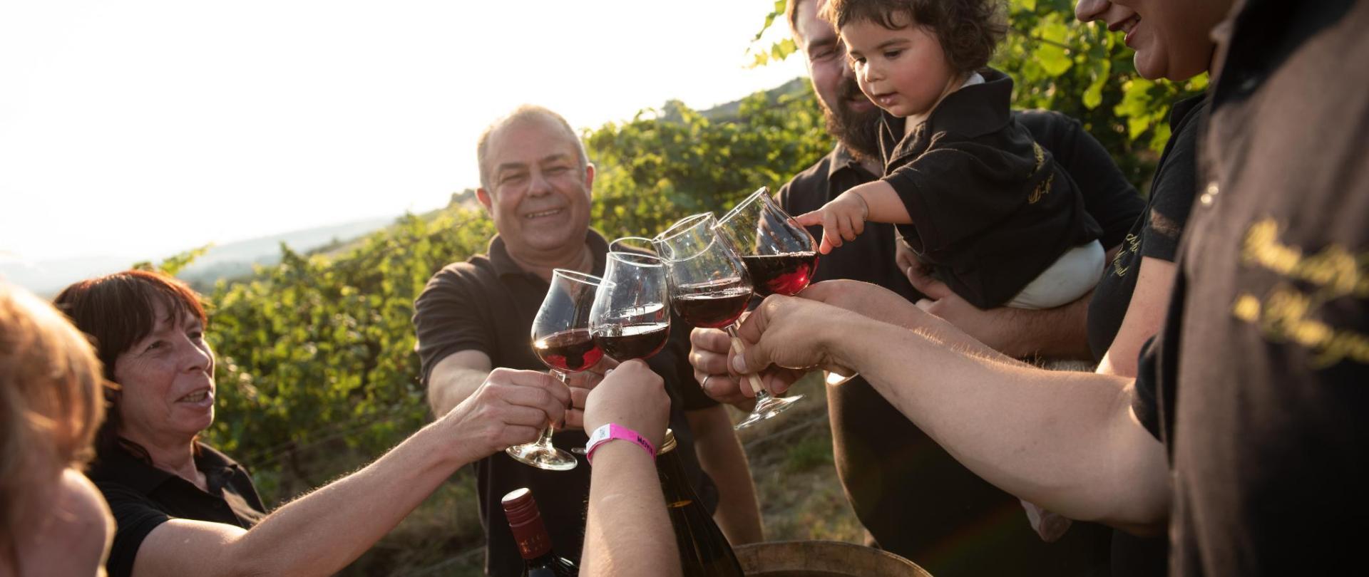 Weinschlößchen im Weingut Roos