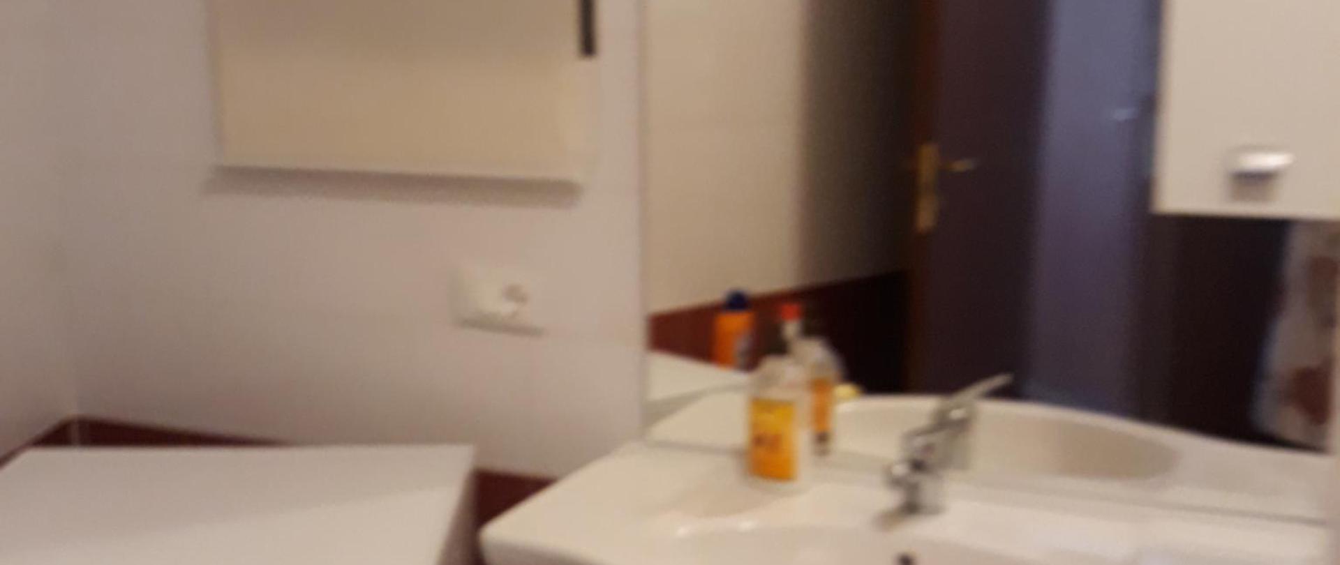 Grazioso Appartamento Genziane