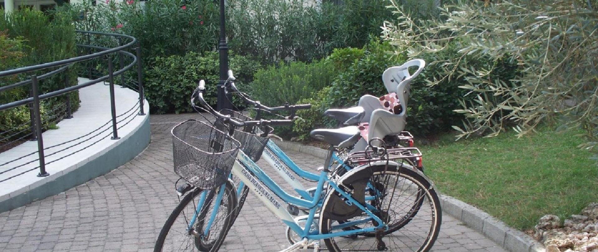biciclettecb.jpg