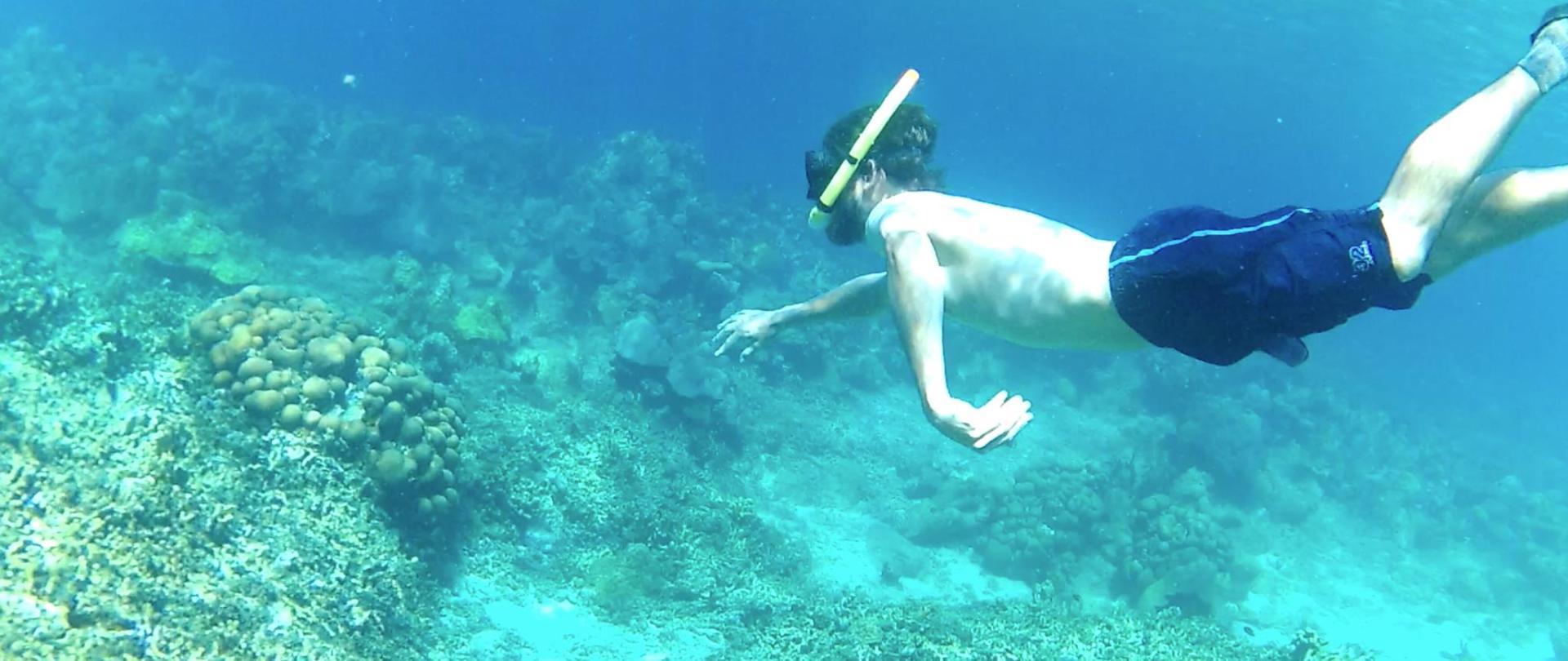 Snorkeling6.png