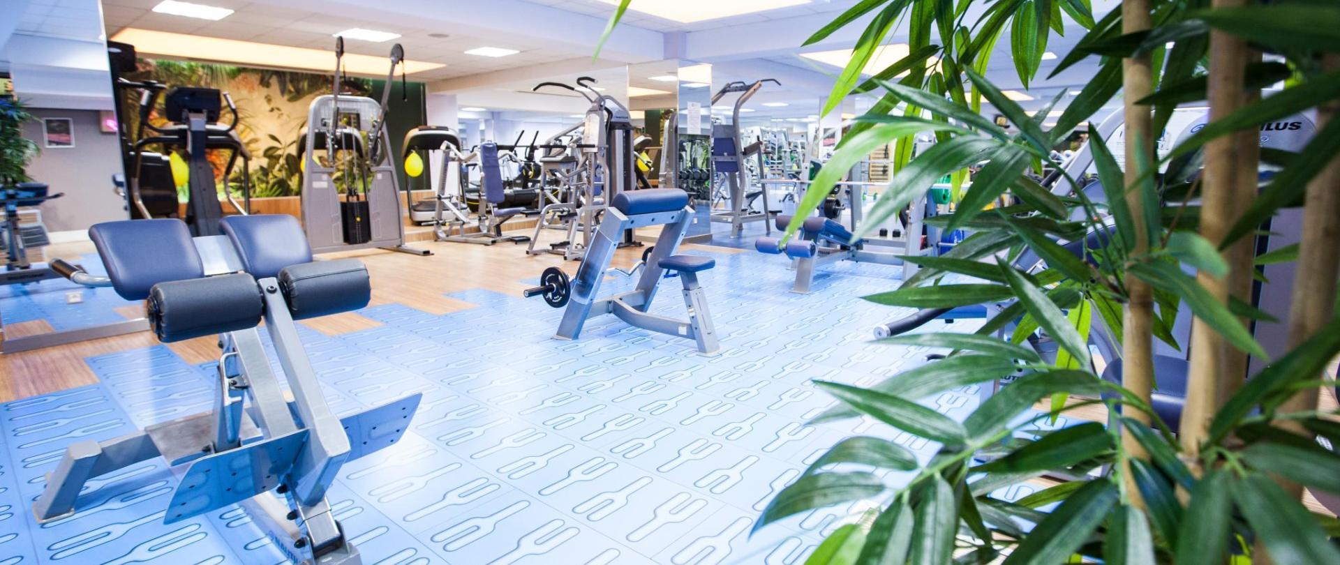 sala fitness 8.jpg