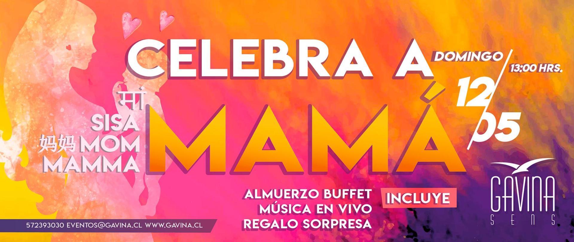 DIA MAMA banner web.jpg