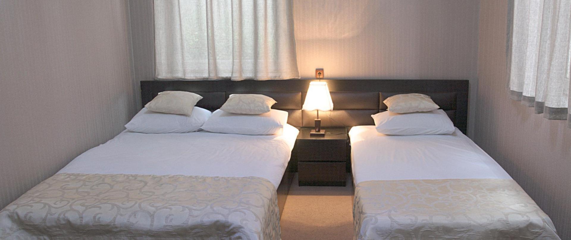 Khách sạn mới Metekhi