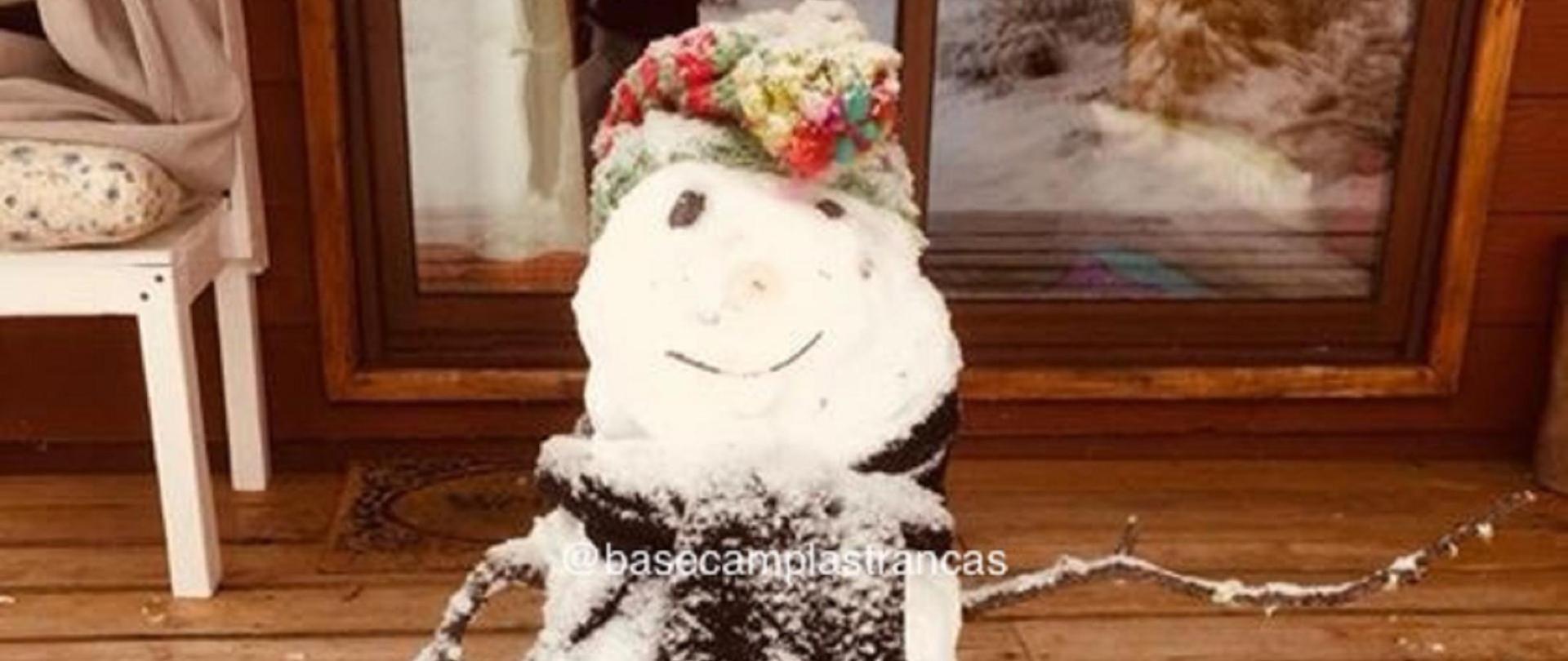 winter 6.jpg