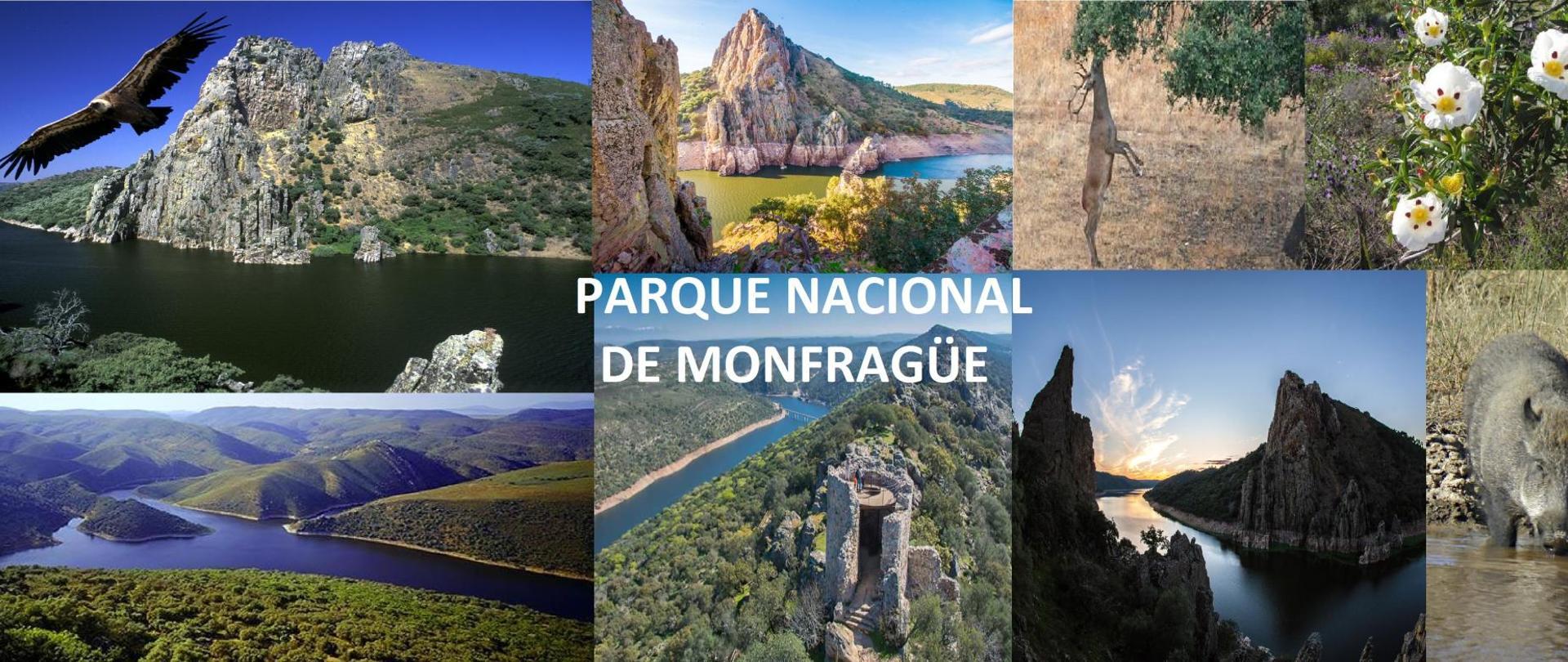 PARQUE NACIONAL DE MONFRAGÜE.jpg