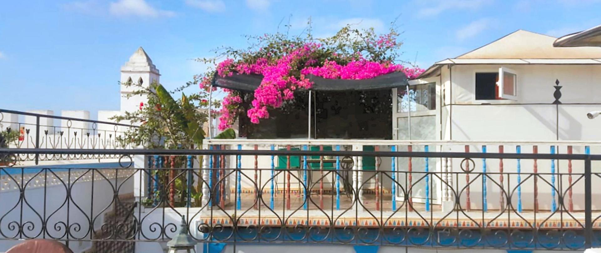 terrasse-tente-novembre2.jpg