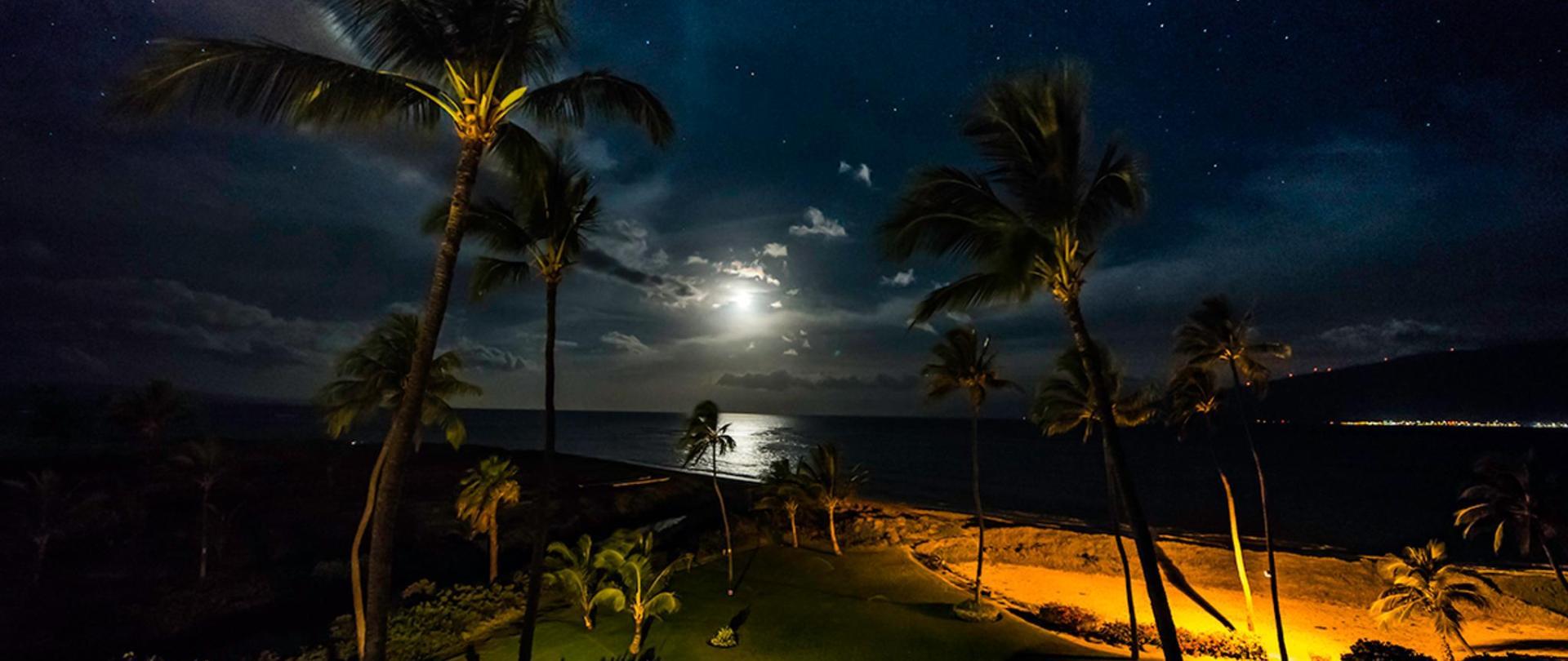 KL 501 night image.jpg