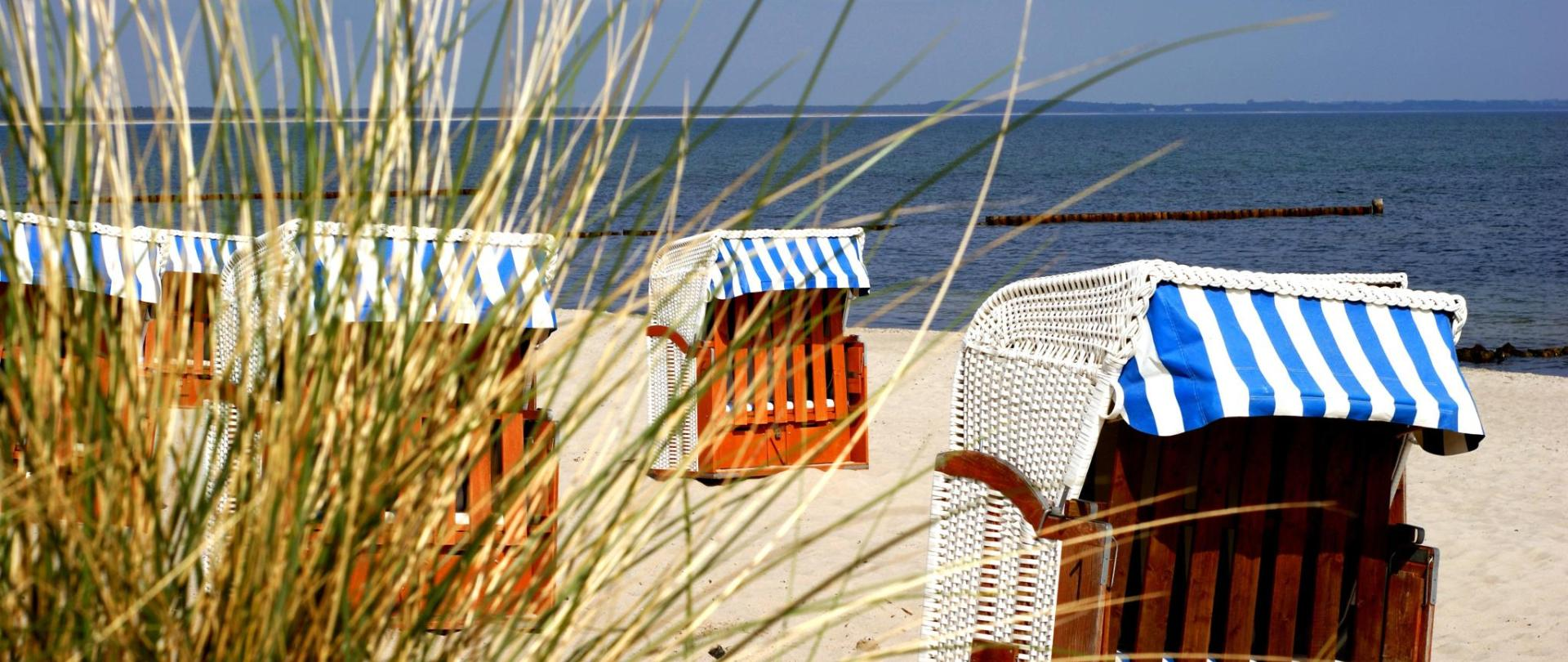 beach-223972.jpg