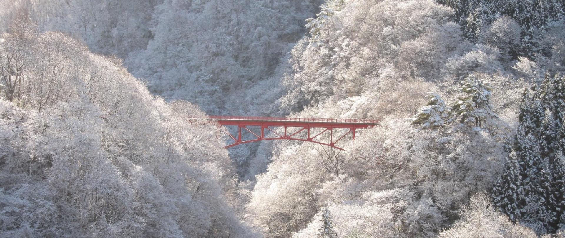 高井橋冬(1).jpg