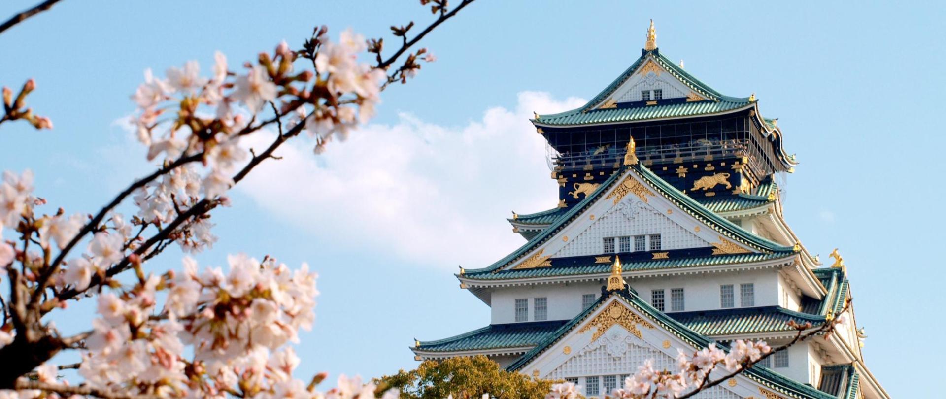 大阪城(桜).jpg