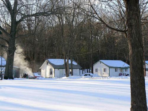 c2-winter.jpg