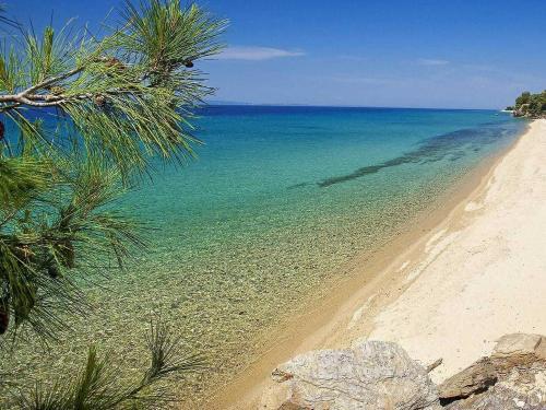 halkidiki-beach-1-1.jpg