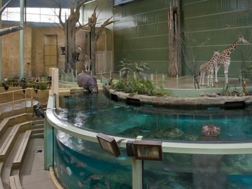 Calgary Zoo Package